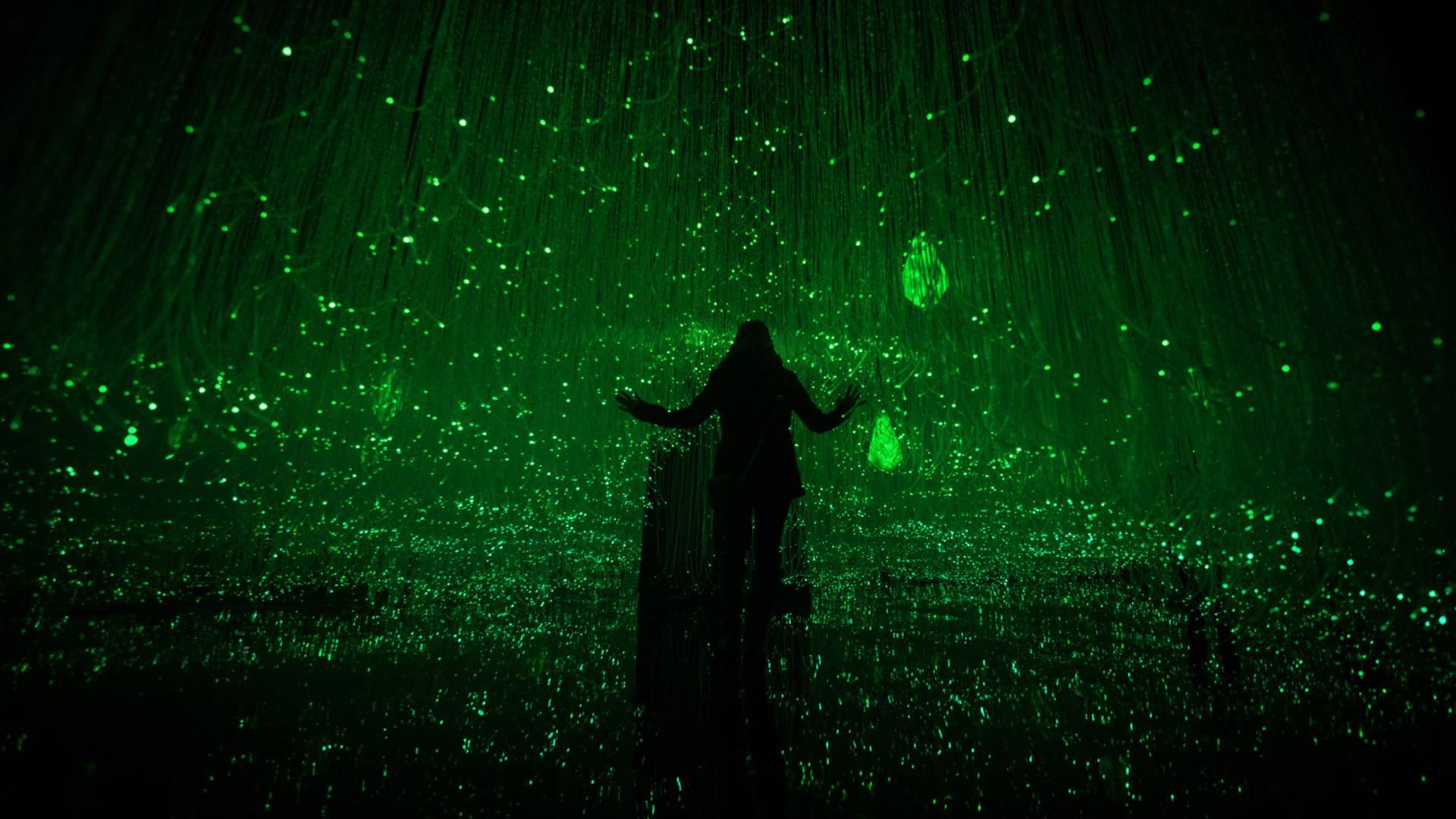 Museum of Feelings: Joyful Room, responsive fibre optic forest
