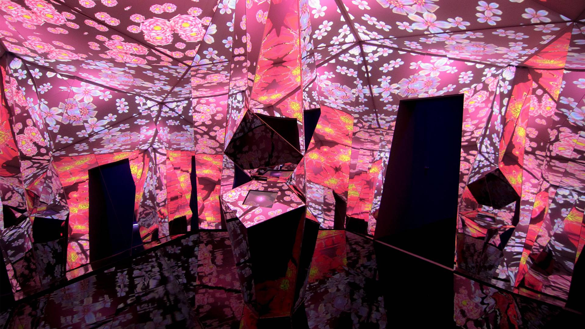 Museum of Feelings: Exhilarated Room, responsive floral kaleidoscope and mirror installation